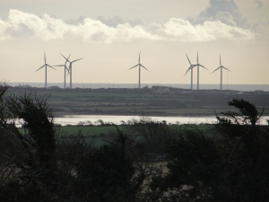 Part of the Carnsore Point windfarm contributing clean energy to Ireland's renewable energy  capacity which can power 1.7 million homes.