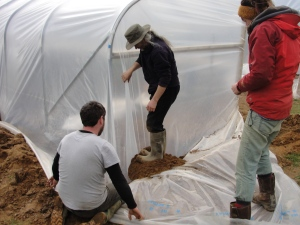 Jim stands on soil to weigh down and tighten the plastic cladding while Caoimghín is ready to shovel in more soil and Ali slowly releases the edge of the sheet underfoot to keep the plastic tight.